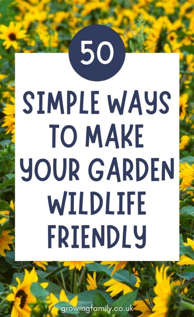 How to make your garden more wildlife friendly - 50 easy ways to garden for wildlife and turn your outdoor space into a wildlife haven.