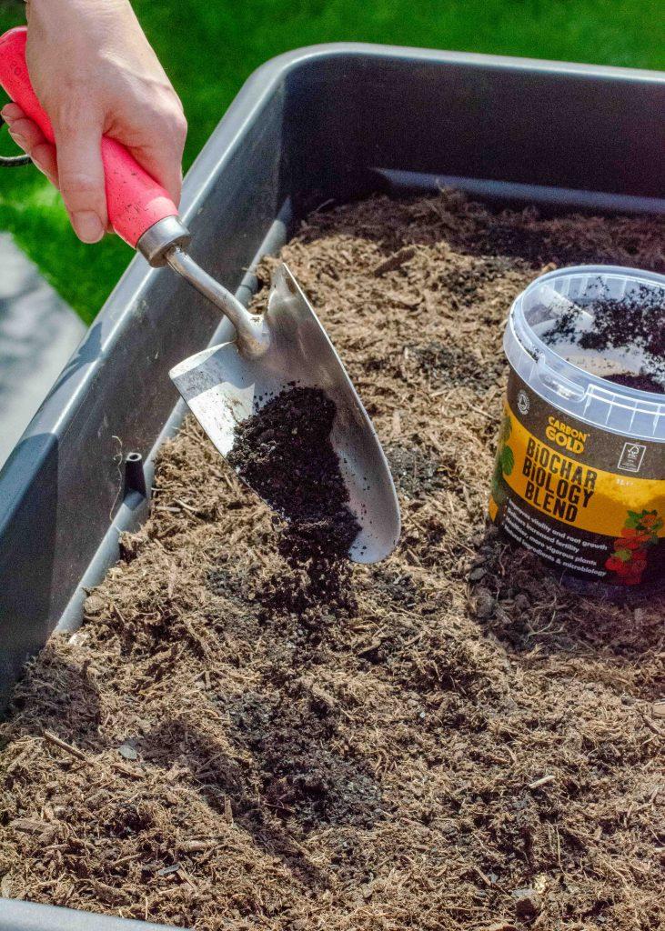 adding carbon gold biochar biology blend to compost