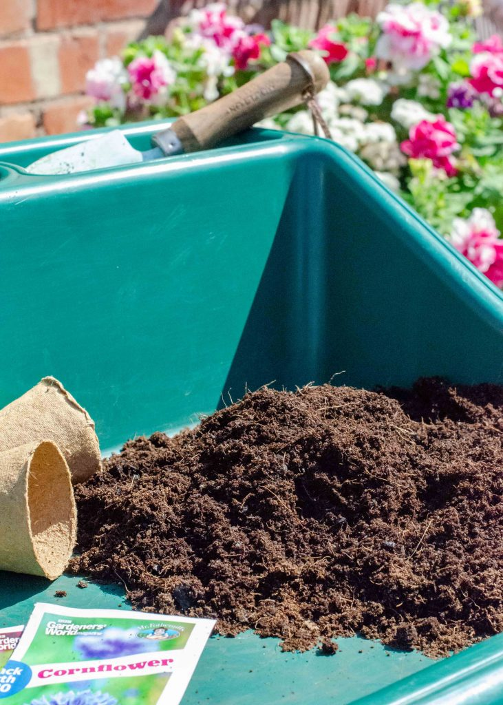 compost and seed packets on potting tray
