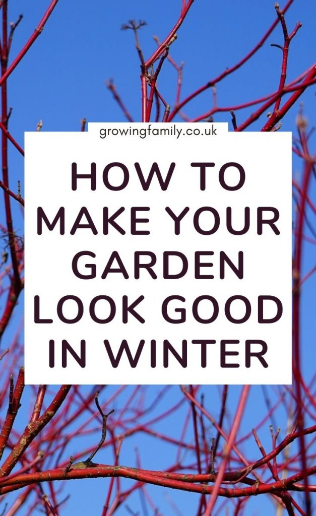 Need some quick fixes to make your garden look great this winter?  Check out these easy ways to perk up your winter garden and outdoor space.