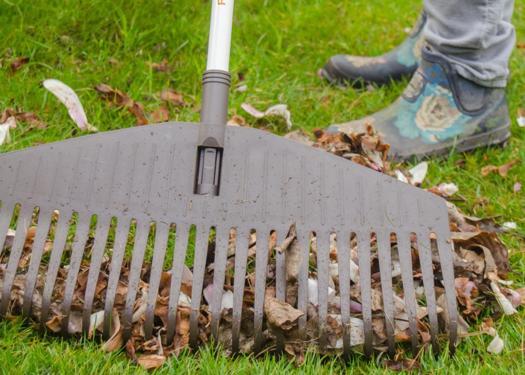 winter garden jobs - raking leaves