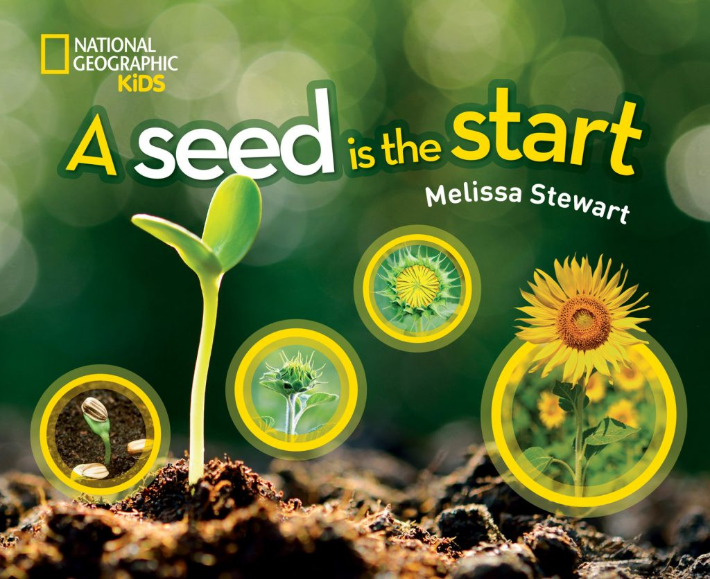 a seed is the start book